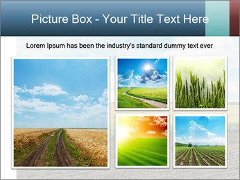 Yellow Field PowerPoint Templates - Slide 19