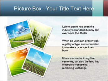 Yellow Field PowerPoint Templates - Slide 23