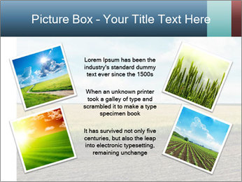 Yellow Field PowerPoint Templates - Slide 24