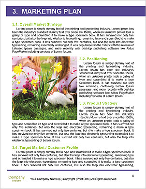 0000088879 Word Template - Page 8