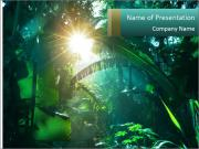 Green Jungle PowerPoint Templates