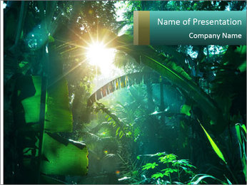 Green Jungle PowerPoint Template - Slide 1