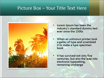 Green Jungle PowerPoint Template - Slide 13