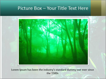 Green Jungle PowerPoint Template - Slide 15