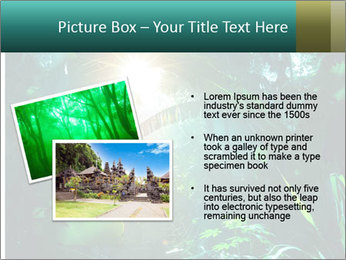 Green Jungle PowerPoint Template - Slide 20