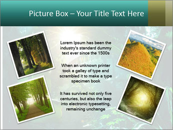 Green Jungle PowerPoint Template - Slide 24
