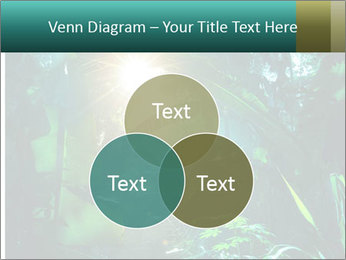 Green Jungle PowerPoint Template - Slide 33