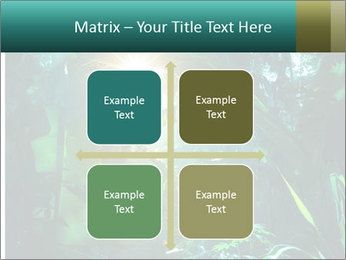 Green Jungle PowerPoint Template - Slide 37