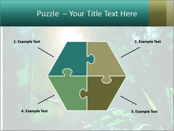 Green Jungle PowerPoint Template - Slide 40