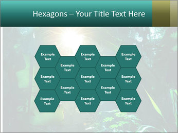 Green Jungle PowerPoint Template - Slide 44