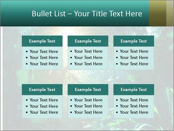 Green Jungle PowerPoint Templates - Slide 56
