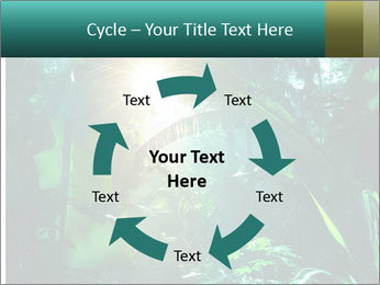 Green Jungle PowerPoint Template - Slide 62