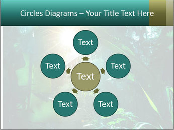 Green Jungle PowerPoint Template - Slide 78