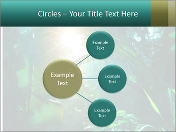 Green Jungle PowerPoint Template - Slide 79