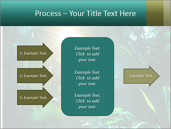 Green Jungle PowerPoint Template - Slide 85