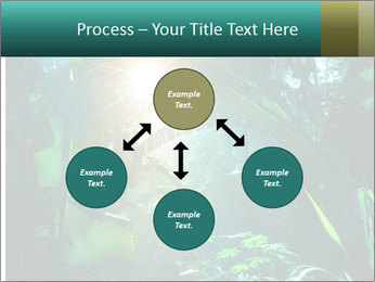 Green Jungle PowerPoint Template - Slide 91