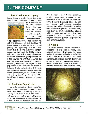 0000088888 Word Template - Page 3