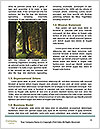 0000088888 Word Templates - Page 4