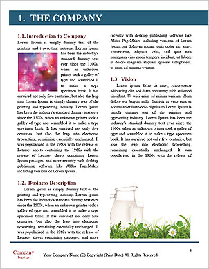 0000088892 Word Template - Page 3