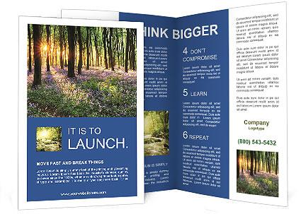 0000088893 Brochure Template