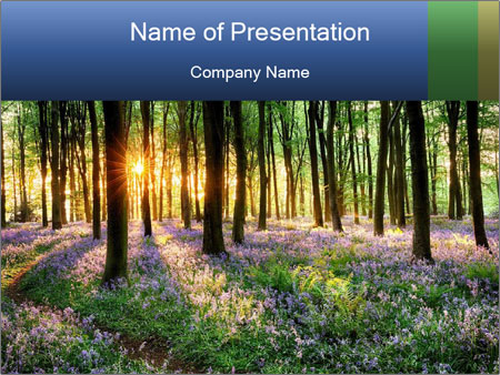 Enchanted forest PowerPoint Templates
