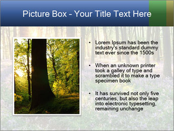 Enchanted forest PowerPoint Templates - Slide 13