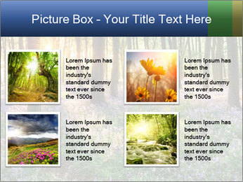 Enchanted forest PowerPoint Templates - Slide 14