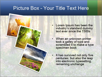 Enchanted forest PowerPoint Templates - Slide 17