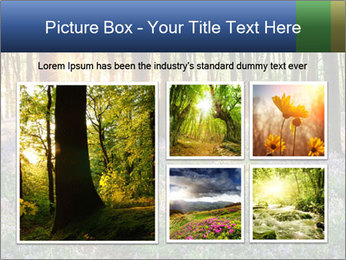 Enchanted forest PowerPoint Templates - Slide 19