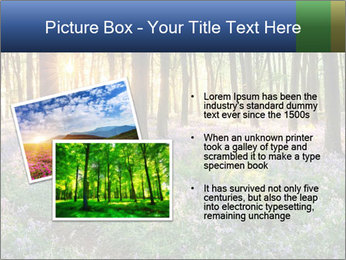 Enchanted forest PowerPoint Templates - Slide 20