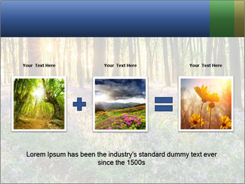 Enchanted forest PowerPoint Templates - Slide 22