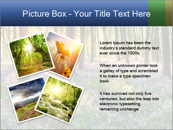 Enchanted forest PowerPoint Templates - Slide 23