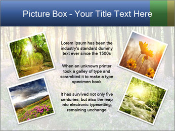 Enchanted forest PowerPoint Templates - Slide 24