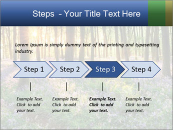 Enchanted forest PowerPoint Templates - Slide 4
