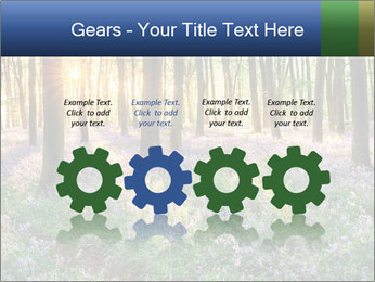 Enchanted forest PowerPoint Templates - Slide 48
