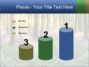 Enchanted forest PowerPoint Templates - Slide 65