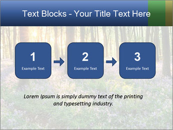 Enchanted forest PowerPoint Templates - Slide 71