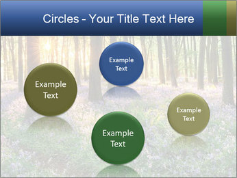Enchanted forest PowerPoint Templates - Slide 77