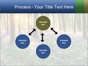 Enchanted forest PowerPoint Templates - Slide 91
