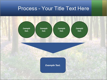 Enchanted forest PowerPoint Templates - Slide 93
