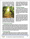 0000088893 Word Template - Page 4