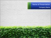Brick wall in the garden. PowerPoint Template