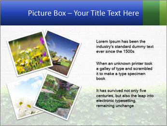 Brick wall in the garden. PowerPoint Templates - Slide 23