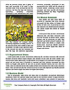 0000088896 Word Templates - Page 4