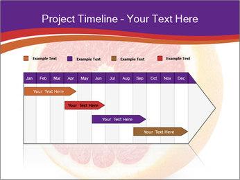 Grapefruit PowerPoint Template - Slide 25
