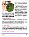 0000088910 Word Templates - Page 4