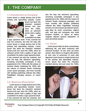 0000088915 Word Template - Page 3