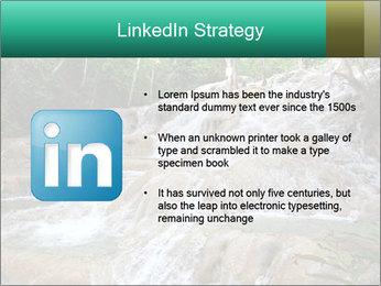 Dunn's River Fall PowerPoint Template - Slide 12