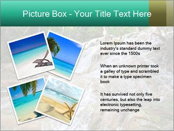 Dunn's River Fall PowerPoint Template - Slide 23