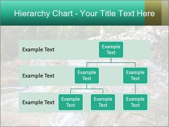 Dunn's River Fall PowerPoint Template - Slide 67